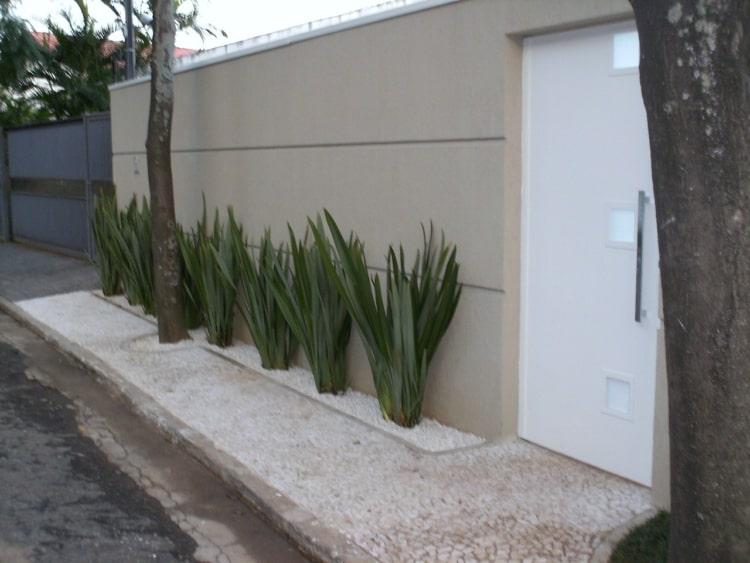 Fórmio decorado com pedrinhas brancas na calçada ao pé do muro